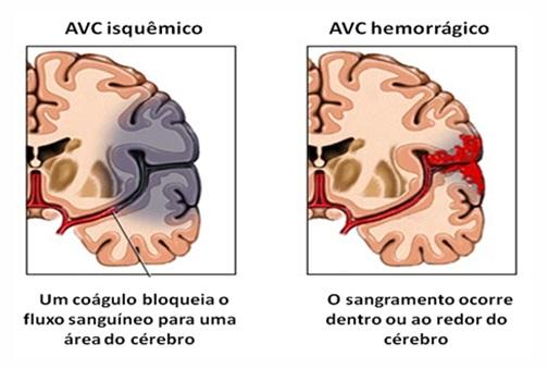 Imagem 4 folha 6